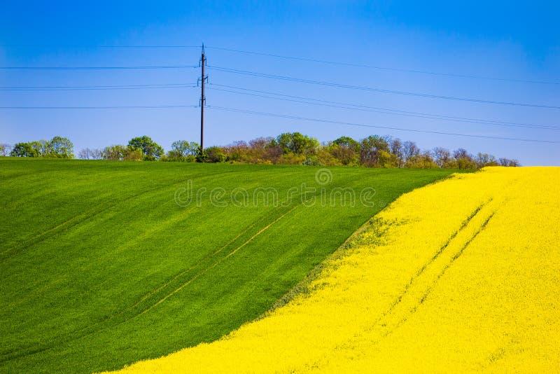 Colza łąkowi wzgórza w obszarze wiejskim kolorowe krajobrazu Uprawia? ziemi? poj?cie zdjęcie stock