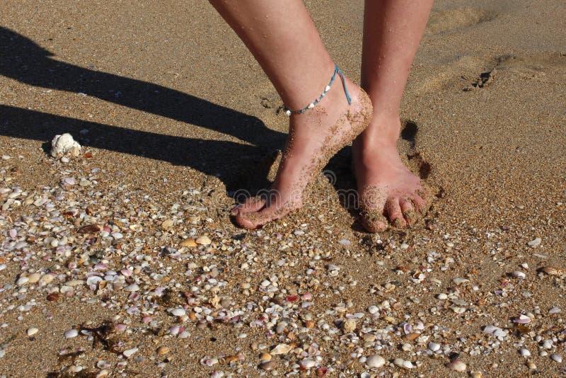 Com os p?s descal?os na praia - areia, escudos & dedos do p? desencapados imagens de stock
