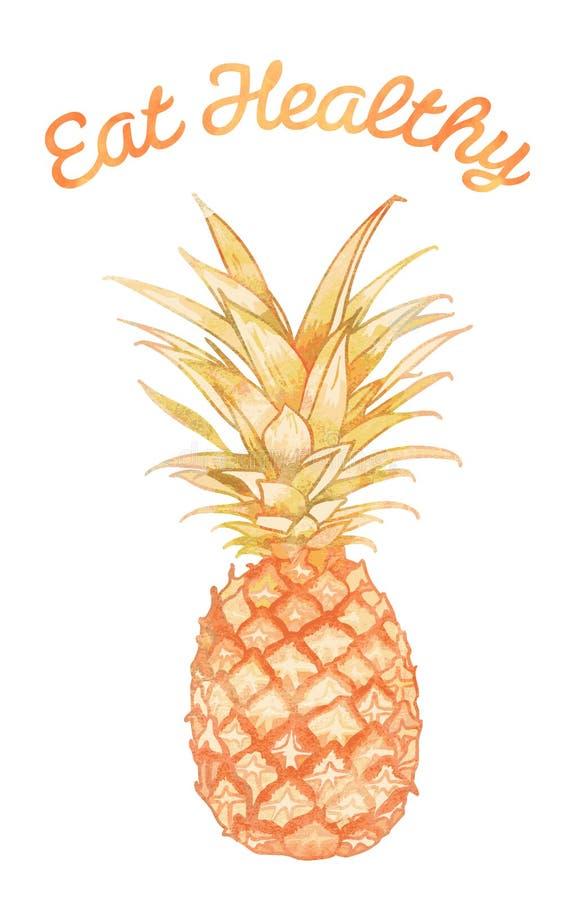 Coma saudável - abacaxi ilustração stock