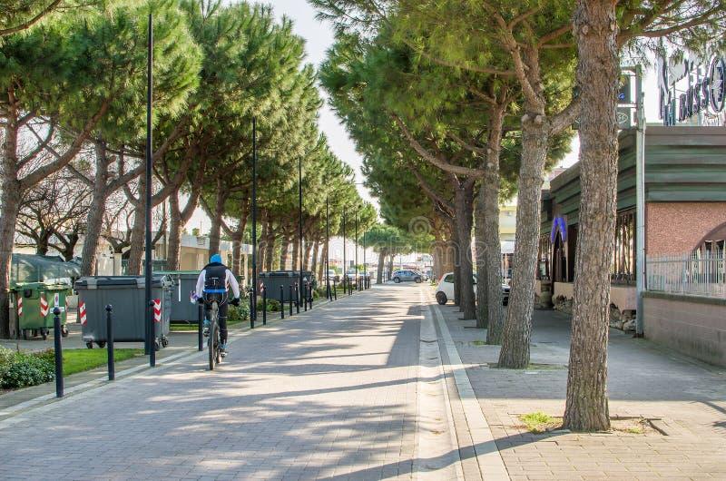 Comacchio, il 12 marzo 2016 - un ciclista pedals sul lungomare alberato immagine stock libera da diritti