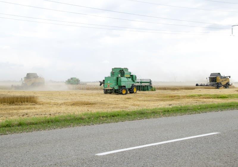 Combain recolhe na colheita do trigo Maquinaria agrícola no campo fotos de stock royalty free