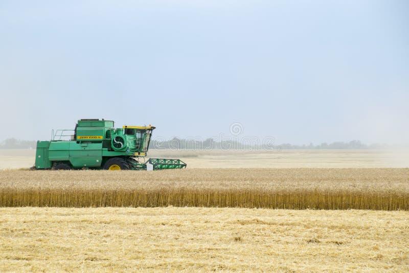 Combain recolhe na colheita do trigo Maquinaria agrícola no campo imagens de stock