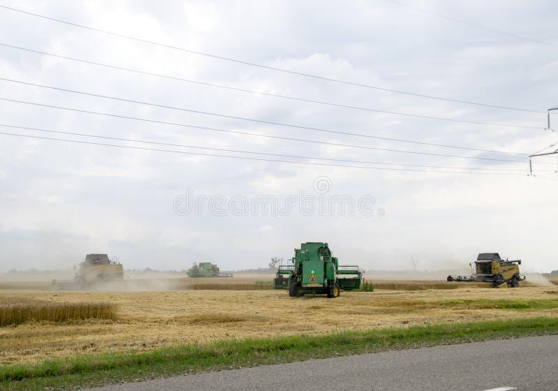 Combain samlar på veteskörden Jordbruks- maskineri i fältet royaltyfri bild