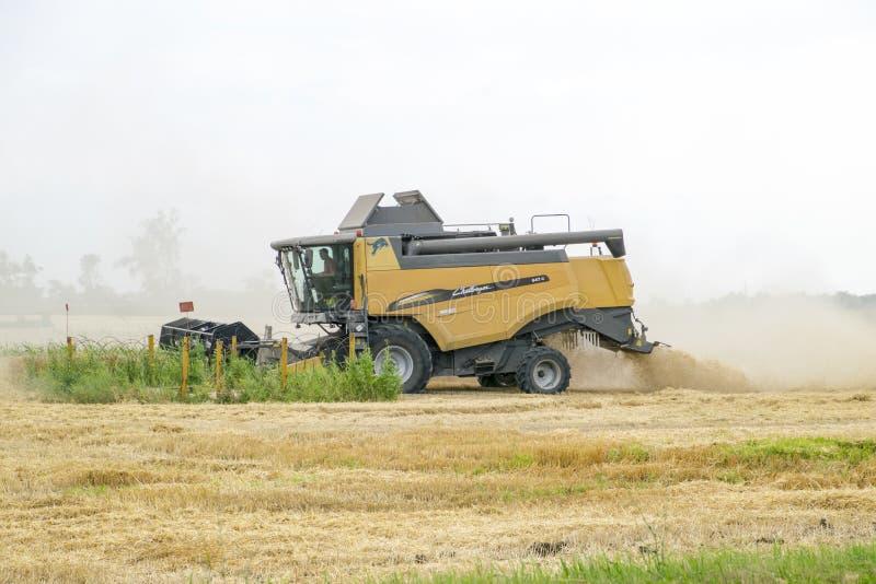 Combain samlar på veteskörden Jordbruks- maskineri i fältet arkivbild
