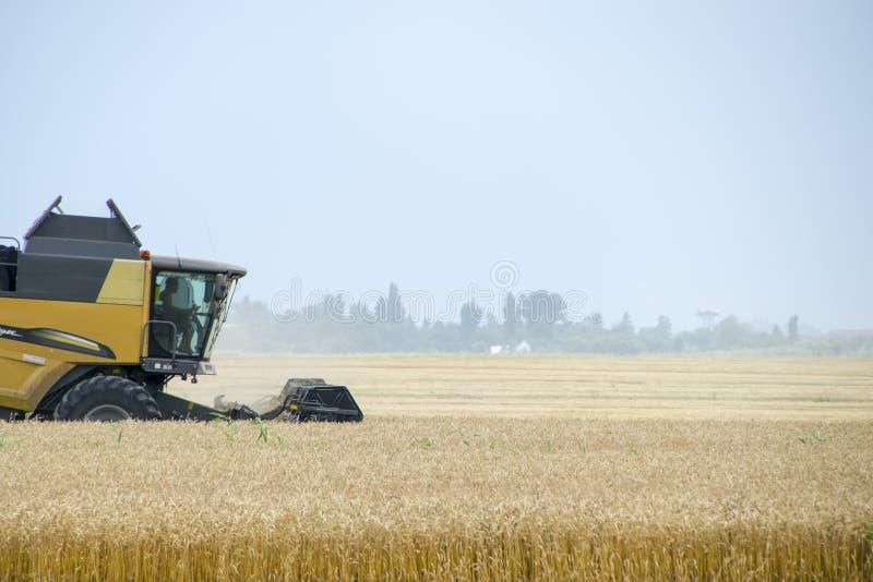 Combain verzamelt op het tarwegewas Landbouwmachines op het gebied royalty-vrije stock afbeeldingen