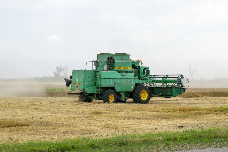 Combain zbiera na pszenicznej uprawie Rolnicza maszyneria w polu zdjęcie royalty free