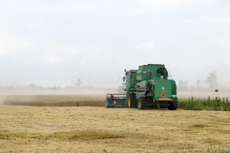 Combain zbiera na pszenicznej uprawie Rolnicza maszyneria w polu fotografia stock