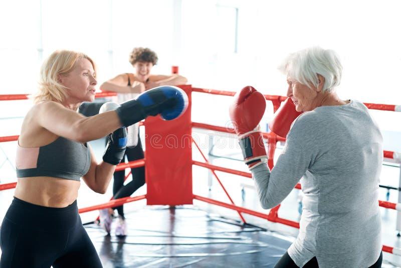 Combat de boxe photo libre de droits