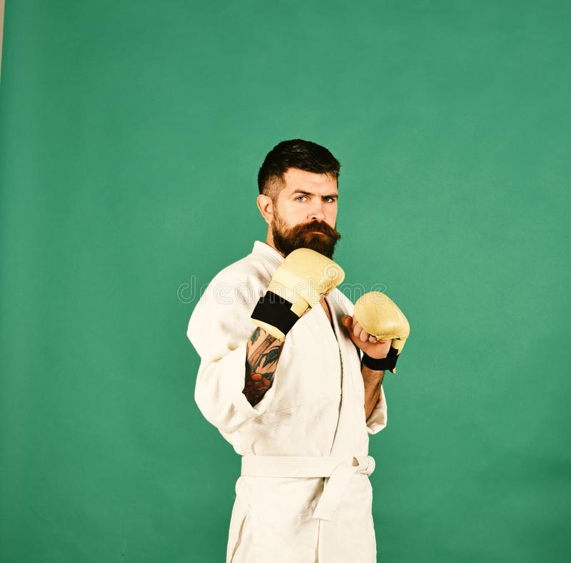 Combat master practices attack or defense posture. Karate man with serious face in uniform and golden boxing gloves. Training and combat concept. Man with stock photos