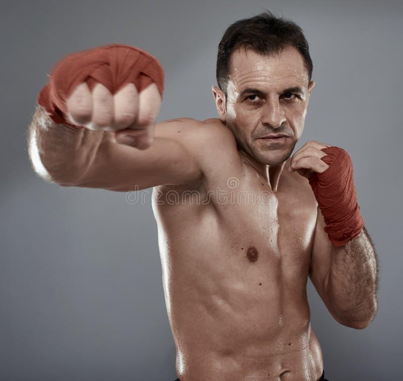 Combatiente de Kickbox en fondo gris fotos de archivo