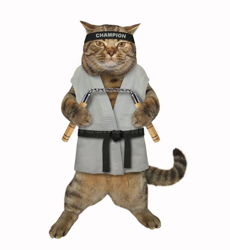 Combatiente del karate del gato con el nunchuck fotos de archivo libres de regalías