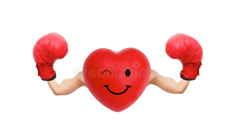 Combatiente fuerte del corazón fotos de archivo libres de regalías