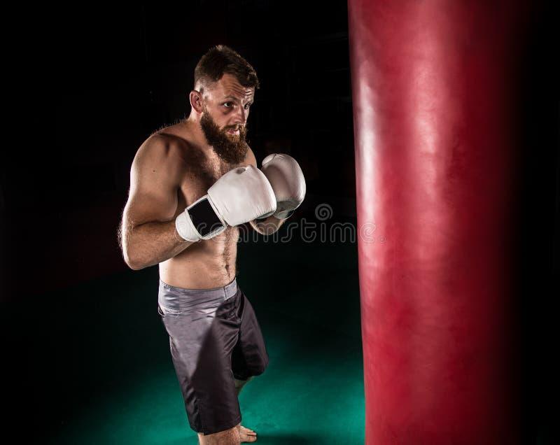 Combatiente muscular del inconformista que da un retroceso fuerte durante un practicar con un bolso del boxeo imágenes de archivo libres de regalías