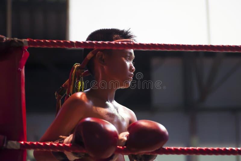Combatiente tailandés de Muay imagen de archivo libre de regalías