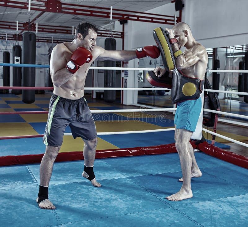 Combatientes de Kickbox que entrenan en el anillo imagenes de archivo