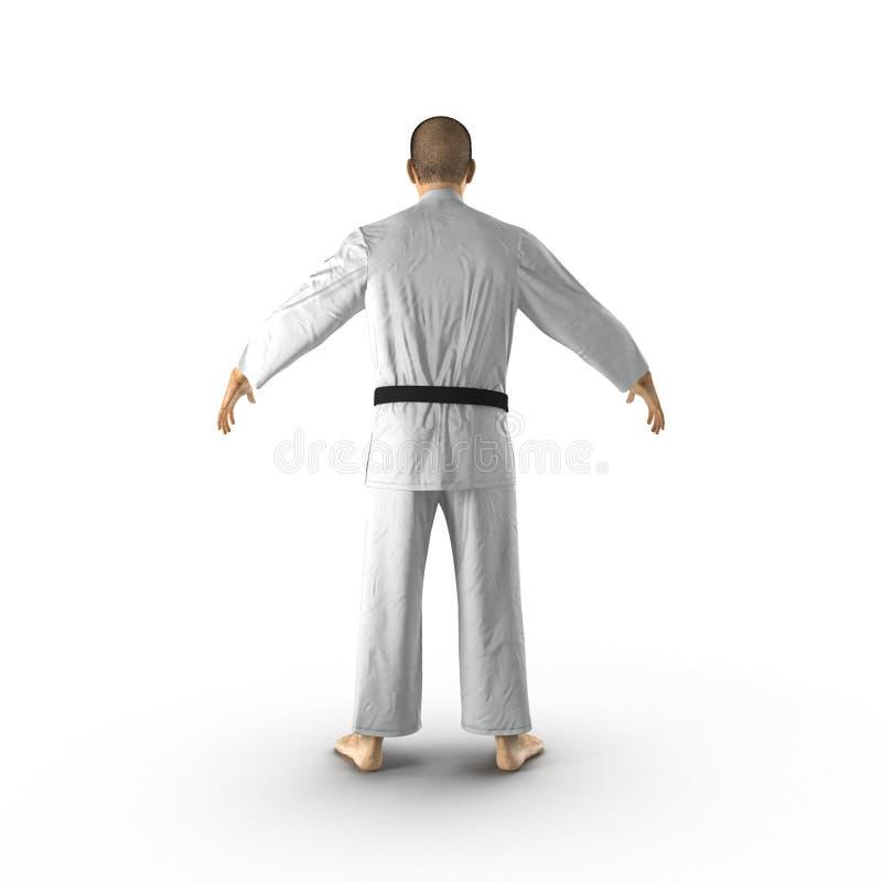 Combattant blanc de karaté d'isolement sur le fond blanc illustration 3D illustration de vecteur