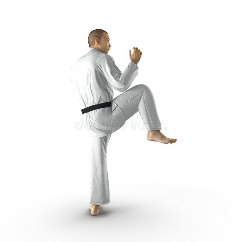 Combattant blanc de karaté d'isolement sur le fond blanc illustration 3D illustration libre de droits