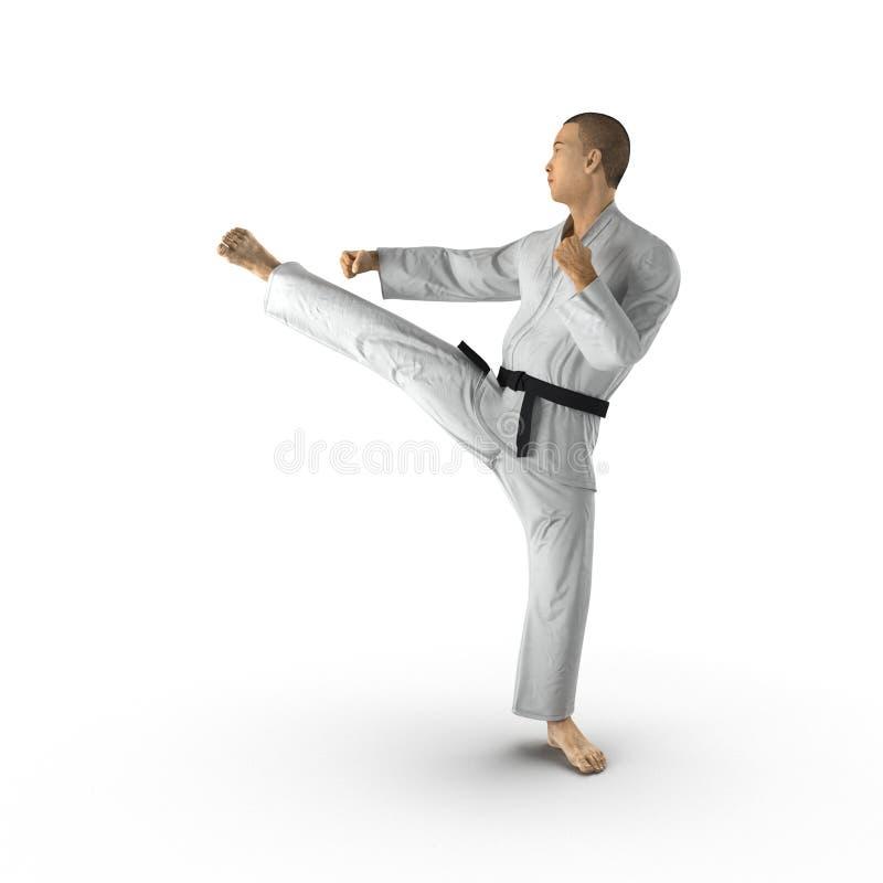 Combattant blanc de karaté d'isolement sur le fond blanc illustration 3D illustration stock