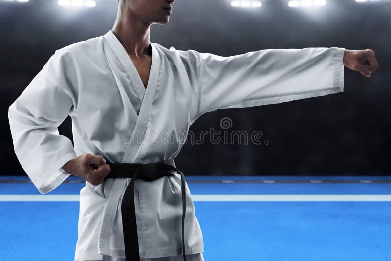 Combattant d'art martial sur l'arène photographie stock libre de droits