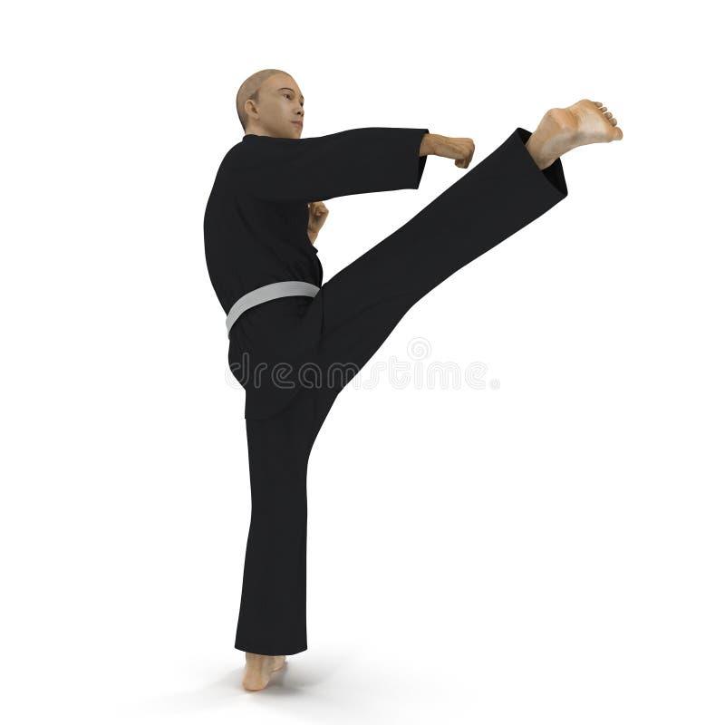 Combattant de karaté dans le kimono noir d'isolement sur le blanc illustration 3D illustration stock
