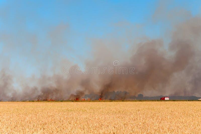 Combattente di fuoco fotografie stock