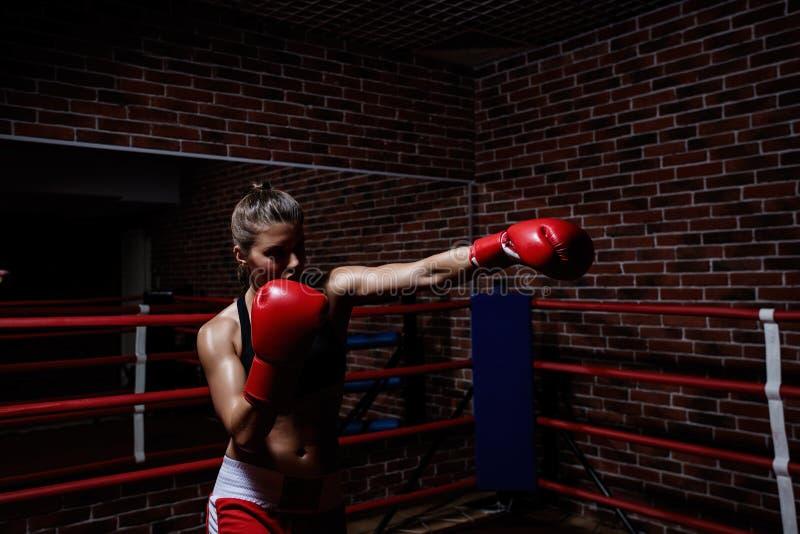 combattimento immagine stock libera da diritti