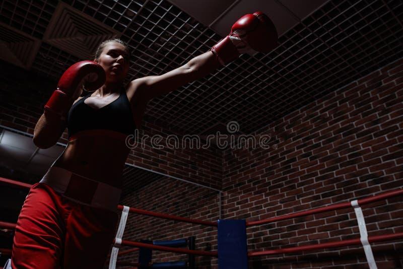 combattimento fotografia stock