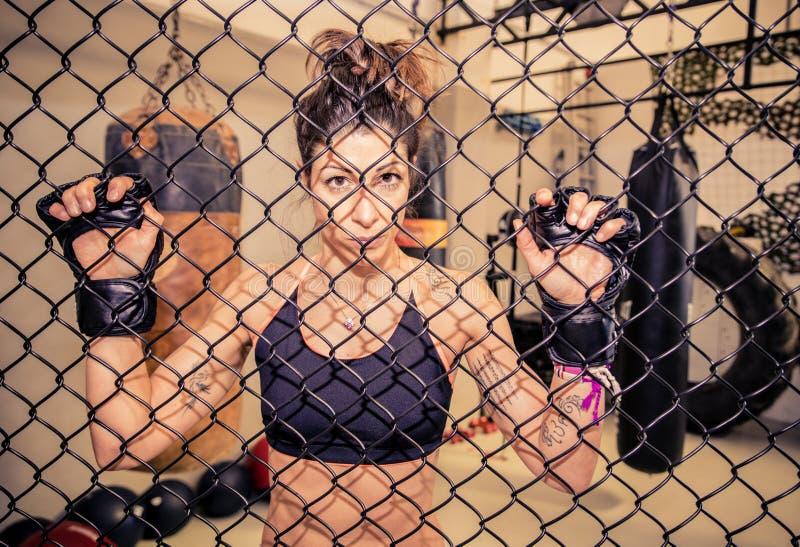 Combattimento degli atleti di arti marziali fotografia stock libera da diritti