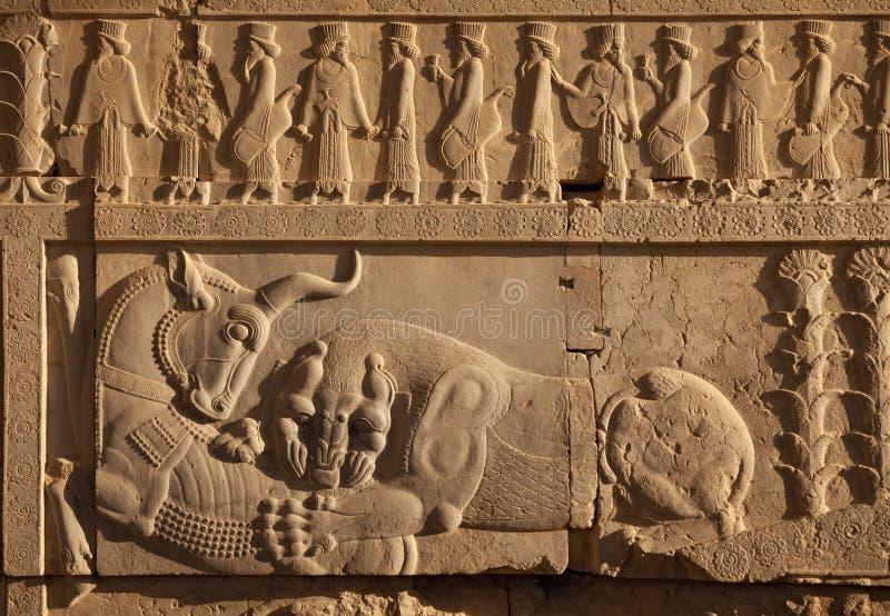 Combattimento del leone contro il toro scolpito sulla parete della scala delle rovine di Persepolis immagine stock libera da diritti