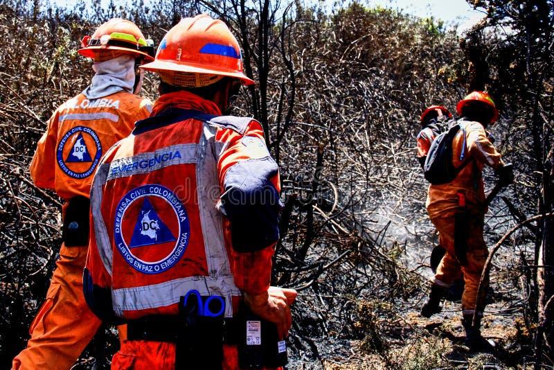 Combattimento delle fiamme di un incendio forestale fotografie stock