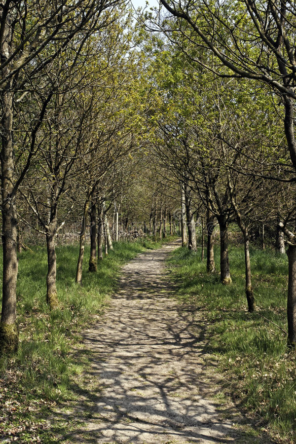Download Combe Valley RSPB Reserve Stock Image - Image: 32107751