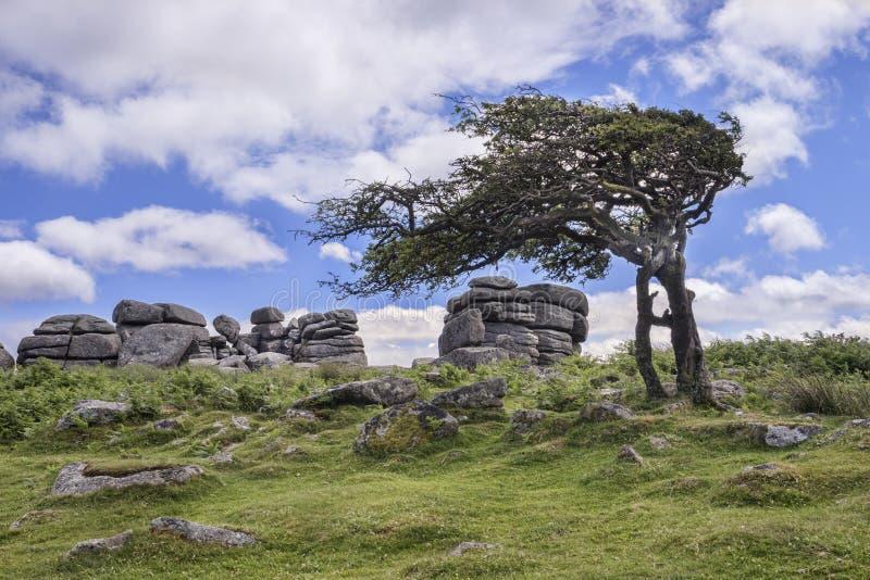 Combestone Tor Dartmoor Reino Unido fotos de stock