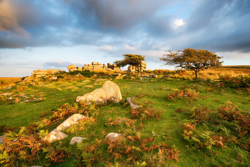 Combestone Tor in Devon. Combestone Tor on Dartmoor National Park in Devon stock image