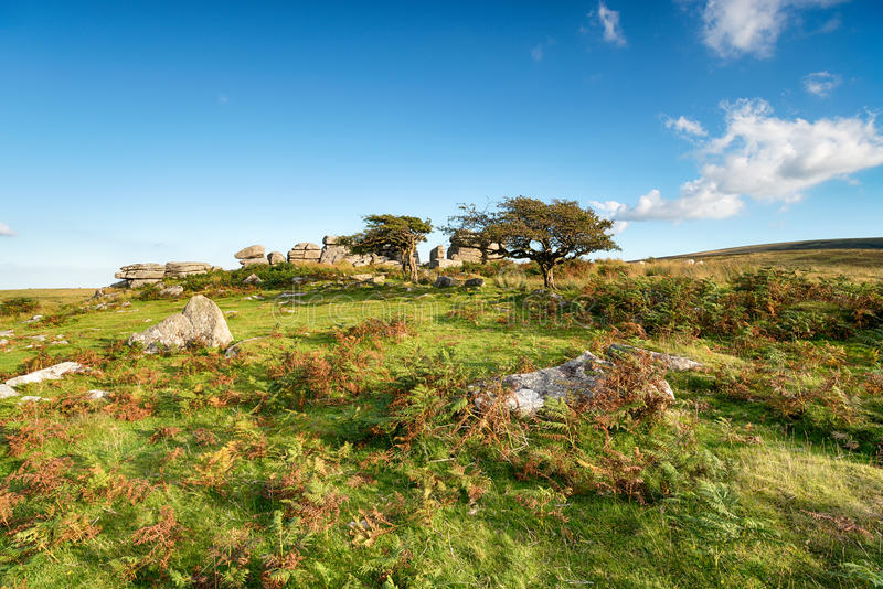 Combestone Tor. Near Hexworthy on Dartmoor in Devon stock photo