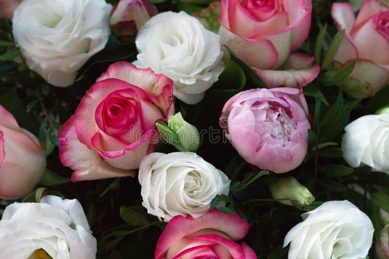 Combinaison de broches et de roses blanches image libre de droits