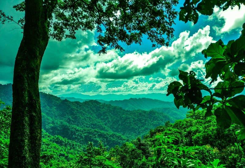 Combinaison parfaite des nuages blancs, du ciel bleu et de l'herbe verte ! ! images stock