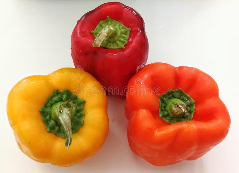 Combinaisons de couleurs gentilles de paprika de légumes photographie stock libre de droits