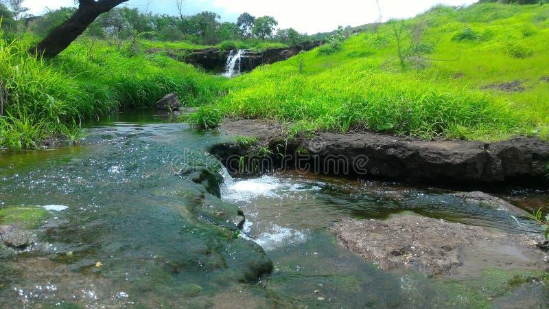 Combinatie Watervallen in Bos royalty-vrije stock foto's