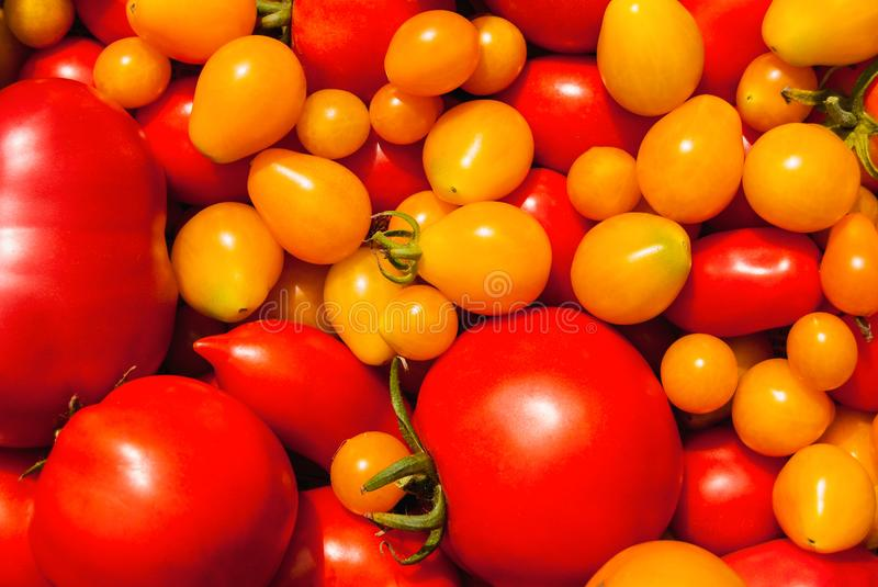 Combination of red and yellow ripe tomatoes of different size as background stock photography