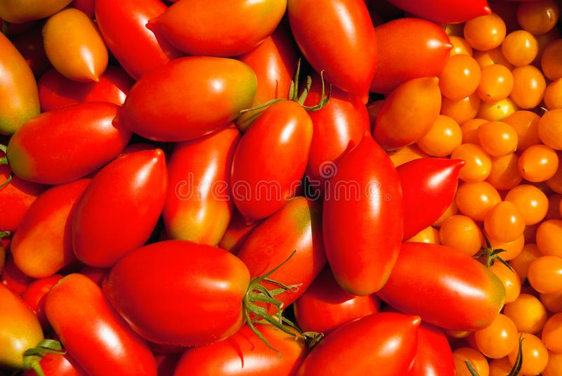 Combination of red and yellow ripe tomatoes of different size as background stock photos