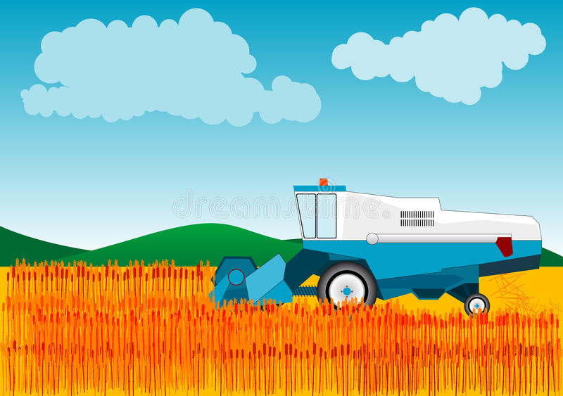 Combine. Blue combine is cutting wheat royalty free illustration