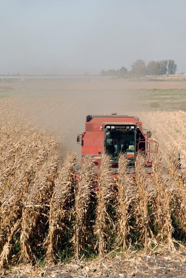Combine e cereale immagini stock libere da diritti