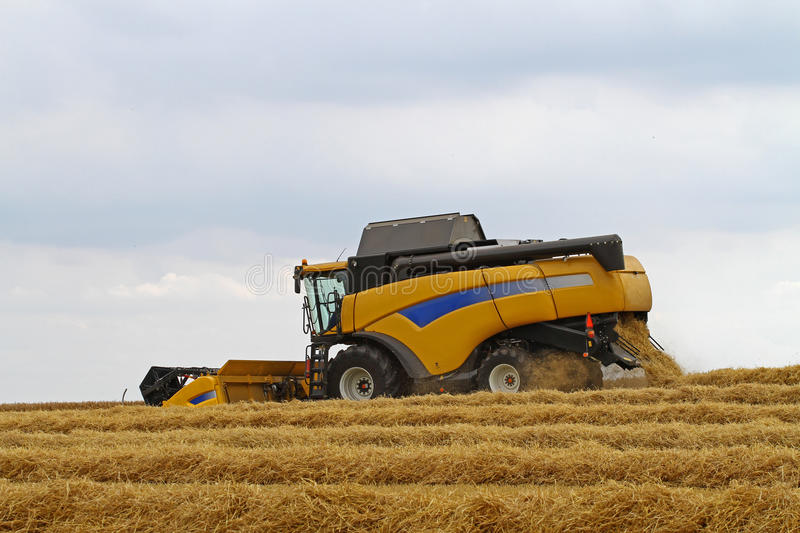 Combine harvester. Yellow combine harvester on a field, harvesting rye royalty free stock images