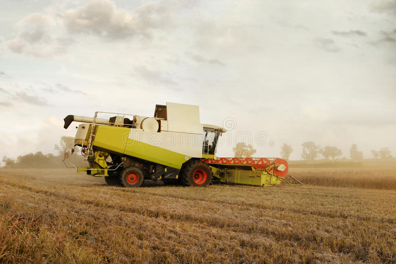 Download Combine Harvester At Corn Royalty Free Stock Photos - Image: 16550158