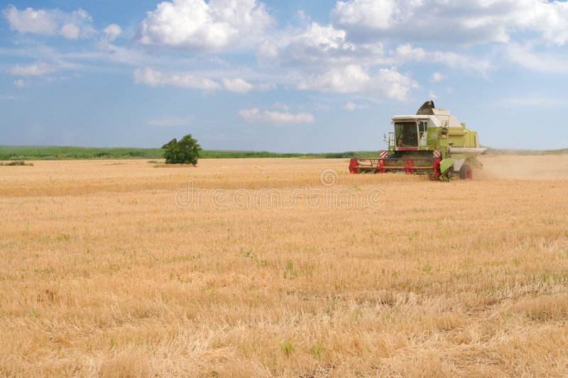 Combine harvester on field royalty free stock photos