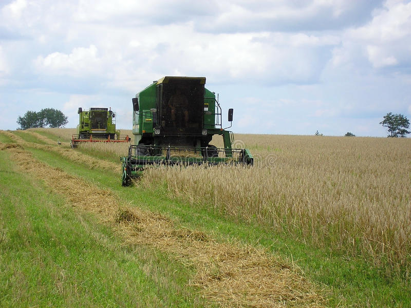 Download Combine harvester stock photo. Image of farmland, farm - 30489452