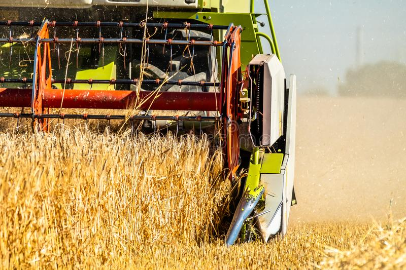 Combine harvester reaping wheat. In the summer stock photography