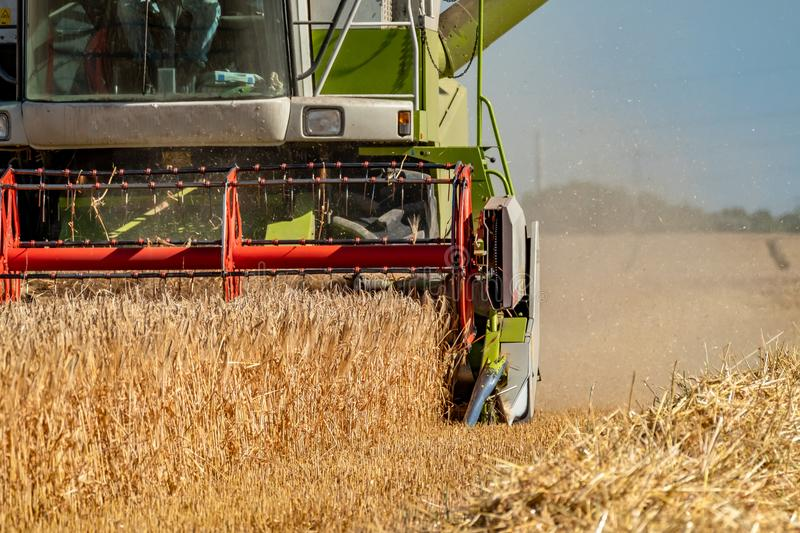 Combine harvester reaping wheat. In the summer stock photos