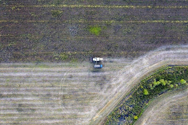 Combine harvester uploads harvest sunflower grains to dump truck. Harvesting season. Agriculture scene. Agricultural harvest field stock images