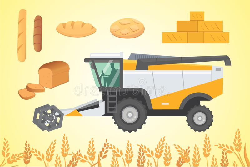 Combine harvester, vector illustration. vector illustration